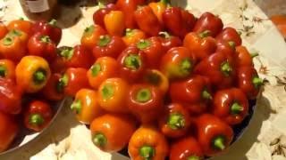 Жареные перцы в масле на зиму закрываем в банки.Grilled peppers in oil for the winter