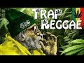 Best Trap Reggae Mix 2018 💊 Best Trap, Bass & EDM Reggae Music 💊 Happy 420