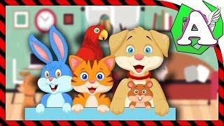 Мультик для детей про голоса домашних животных. Говорят животные  часть 2.