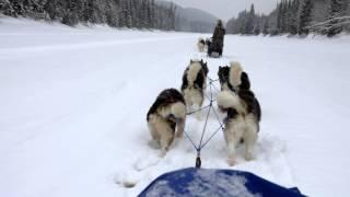 Progression sur la rivière gelée Ouasiemsca - CANADALASKA Thumbnail