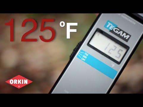 Heat Treatment | Orkin Bed Bug Control