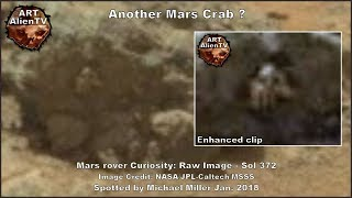 Another Mars Crab Found - Or Electrical Plug ? ArtAlienTV