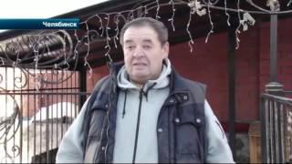В Челябинске неизвестный похитил породистого щенка из вольера частного дома