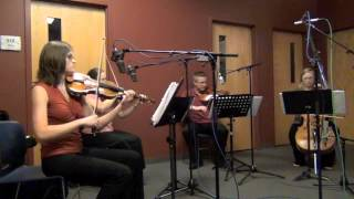 """Largo"" from Winter of the Four Seasons - Vivaldi"