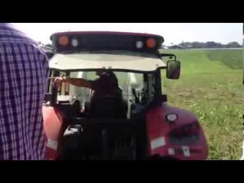 Organic Meadow Field Day - Grazed Sorghum