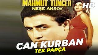 Can Kurban  Mahmut Tuncer Suna Selen Eski Türk Filmi Full İzle