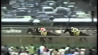 "Preakness Stakes, música ""Maryland, My Maryland"" - Sunday Silence bate a Easy Goer."
