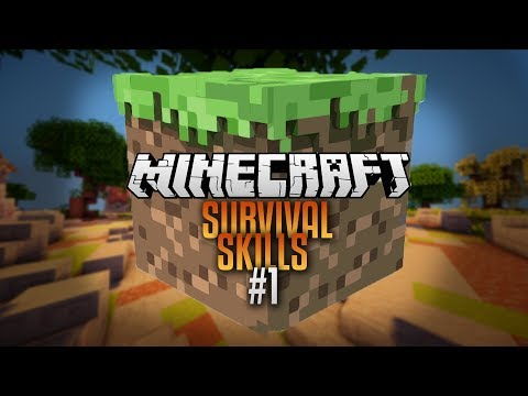 Lets Play Minecraft (Ep1 Survival Skills)