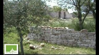 Naturattiva - Strade e Percorsi nella Murgia dei TRULLI - Bosco Selva ( ALBEROBELLO )