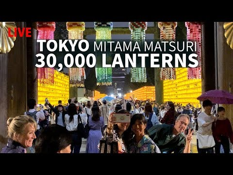 Tokyo's 30,000 Summer Lanterns | Mitama Matsuri
