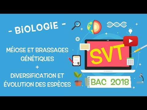 LIVE2018 - Révisions BAC SVT : Génétique et évolution