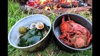 Coastal Foraging & Wild Camping (Mainly drinking)