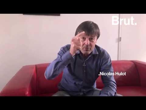 Nicolas Hulot répond à Brut