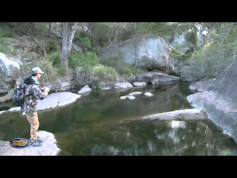 How To Catch Murray Cod - Fishing - BCF