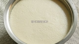 How to Make Dosa Batter At Home | In Mixer Grinder Dosa Batter Recipe | Magic of Indian Rasoi