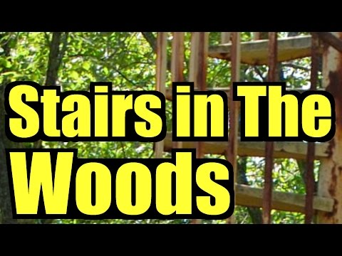 Stairs in the Woods, now a worldwide Mystery, forest ranger SAR documentary, staircase stairway 37