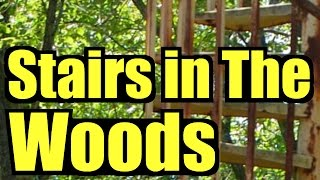 Stairs in the Woods, now a worldwide Mystery, forest ranger SAR documentary, staircase stairway #37