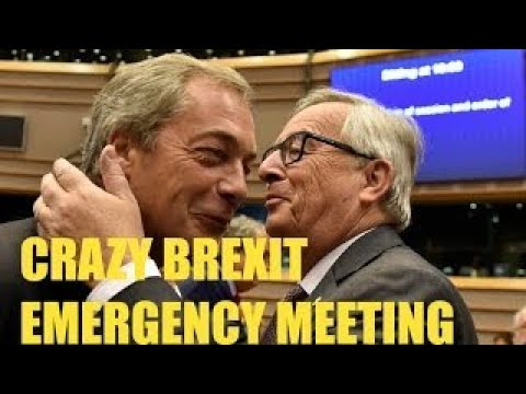 CRAZY EMERGENCY EUROPEAN MEETING over BREXIT EU vs UK Why Are You Here?, Your Not Laughing