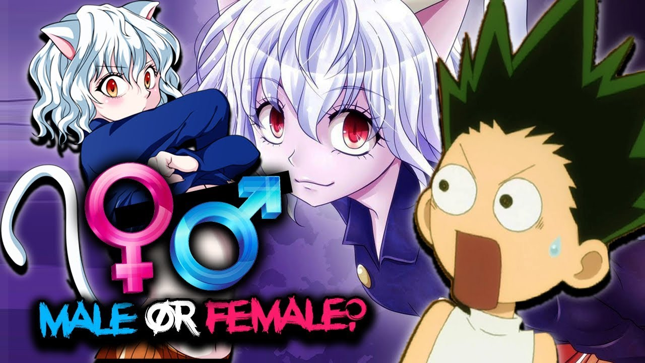 Is Neferpitou A Female Or Male Hunter X Hunter Explained Youtube