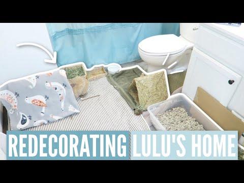 Redecorating My Rabbit's Home
