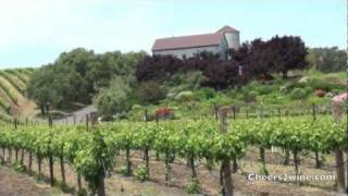 Fun Things to Do in Napa Valley