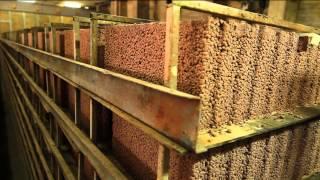 Keramzyt System. Bloczki fundamentowe, pustaki ścienne, beton towarowy Szczecin