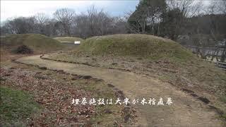 新沢千塚古墳群2(YU用)
