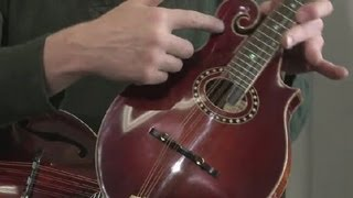 Kinds of Mandolins : Banjos & Mandolins