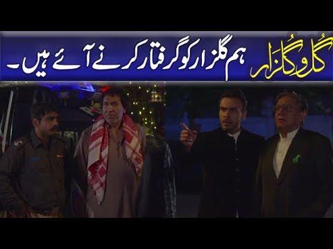 Hum Gulzar Ko Giraftaar Karne Aaye Hain | Gul O Gulzar | Episode 6.