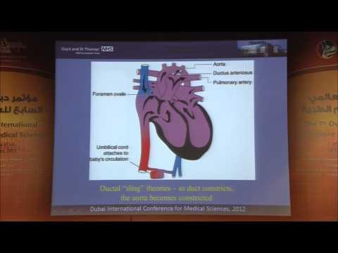 Prof John Simpson, USA, Sonographic approach for antenatal dedection of congenital heart disease