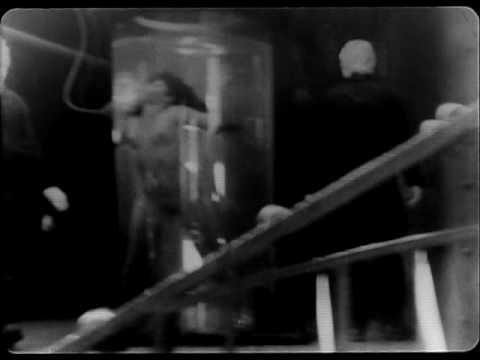 Lumiere (David Lynch)