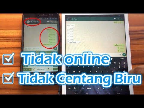 Cara WhatsApp Tidak Terlihat Online + Tidak Centang Biru Tanpa Install Aplikasi Tambahan