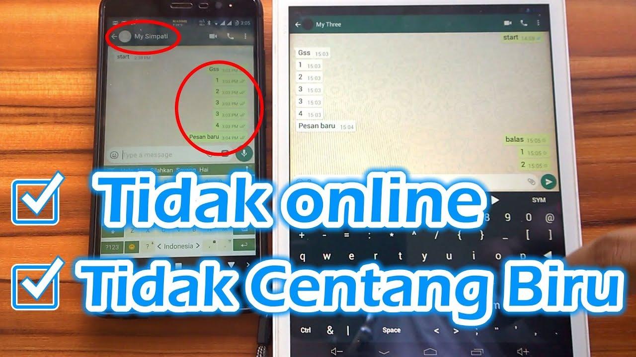 Cara Membuat Akun WhatsApp Tidak Terlihat Online di Ponsel Android