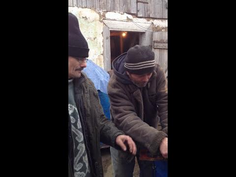 Daniel Olar si prietenul Delea și-au deschis firma de construcții
