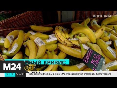Вопрос: Почему говорят, что бананы скоро исчезнут?