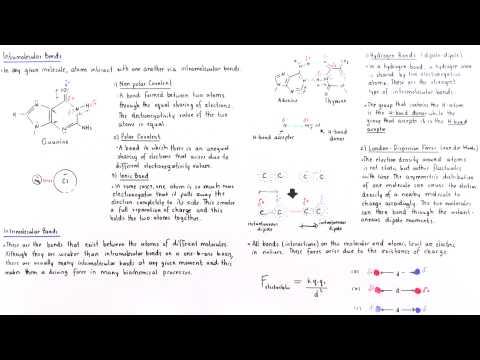 Intramolecular and Intermolecular Forces (Part II)