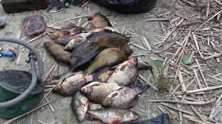 Нерестовый запрет Задержаны два рыбака с сетями