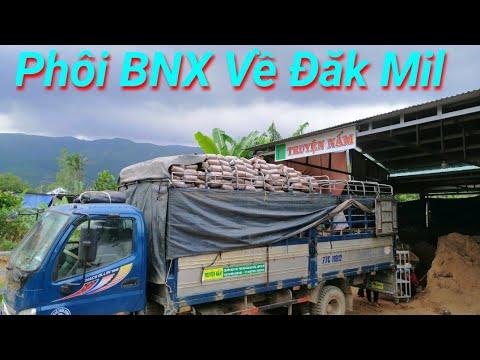 Bán vườn tiêu tại Đăk Song Đăk Nông 1.2 Ha chỉ 570tr. LH 0972158358 from YouTube · Duration:  12 minutes 28 seconds