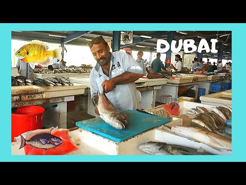DUBAI': EXPERTS CLEANS and SLICES FISH in SECONDS at the FISH MARKET