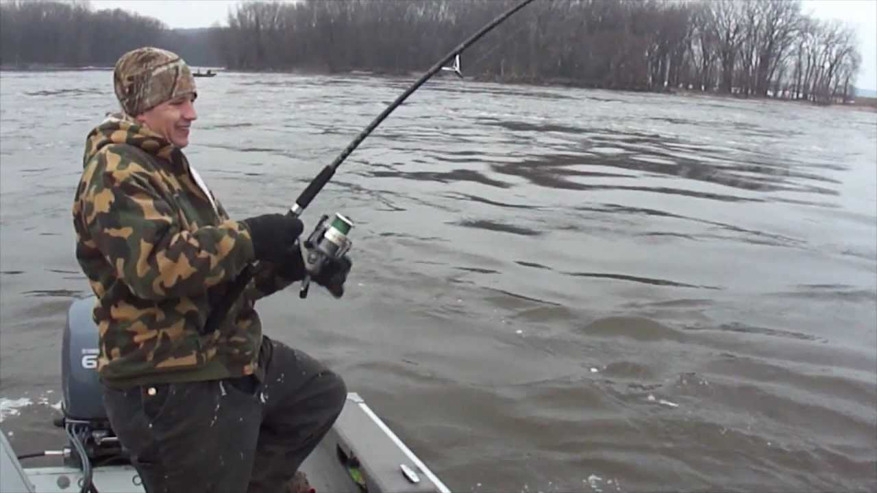 How to snag spoonbill snagging paddlefish youtube for Buy illinois fishing license online