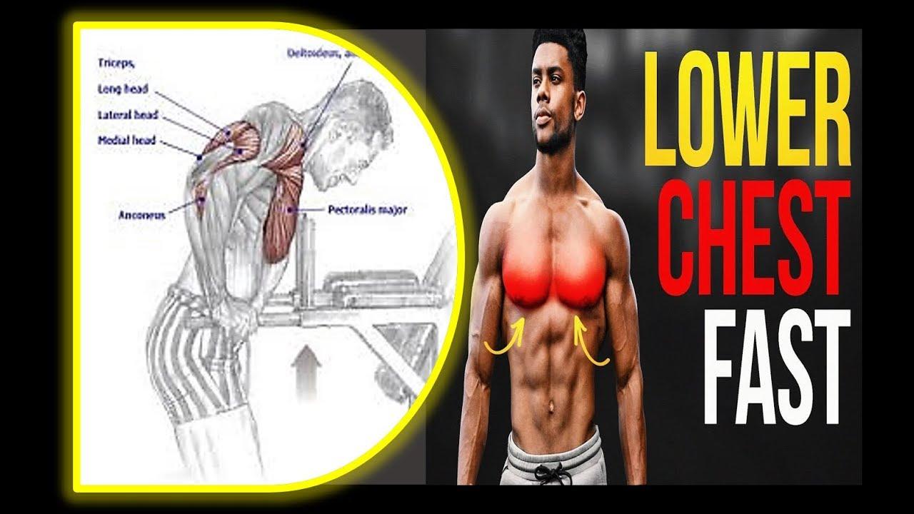 3 Best Lower Chest Exercices Musculation Focus Du Bas Des Pecs Youtube