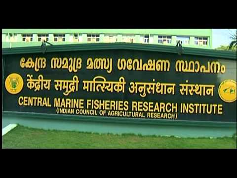 Central Marine Fisheries Research Institute - The Saga Continues