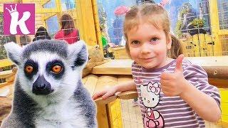 Контактный Зоопарк Зверополис. Кормим, гладим, играем с животными. ZOOTOPIA Zoo