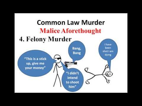 Criminal Law Video 7 - Murder - Intentional Killing