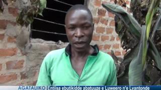 Entiisa ebutikidde abatuuze e Luweero n'e Lyantonde thumbnail