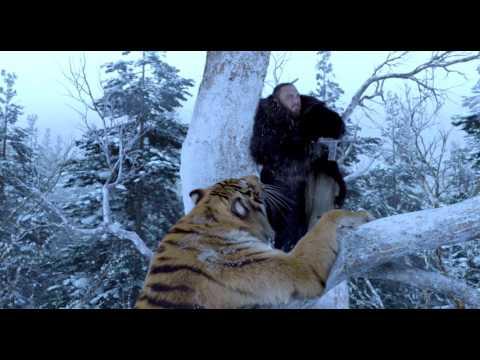 захват горы тигра  ... встреча с тигром ...