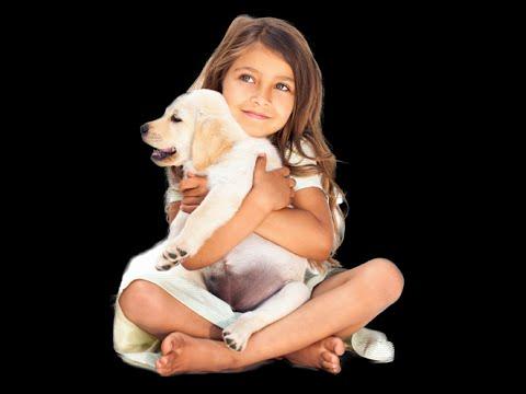 KODA - KEYS For Dogs