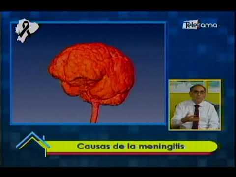 Causas de la meningitis