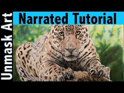 How to Color a Jaguar | Narrated Tutorial