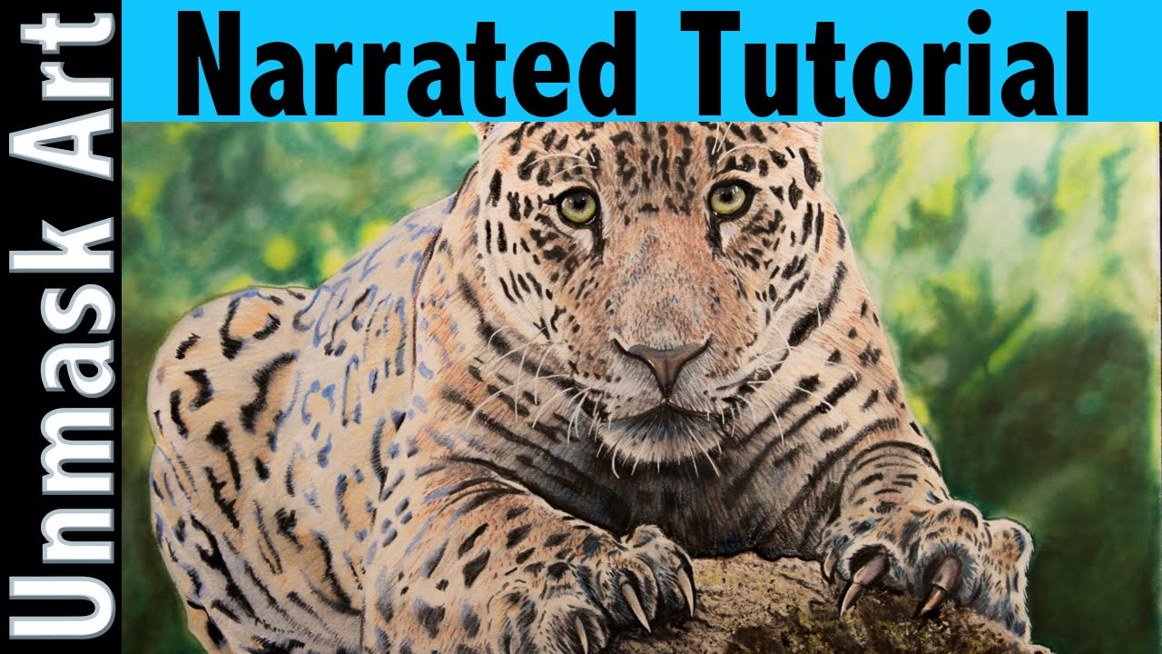 Perfect How To Color A Jaguar | Narrated Tutorial